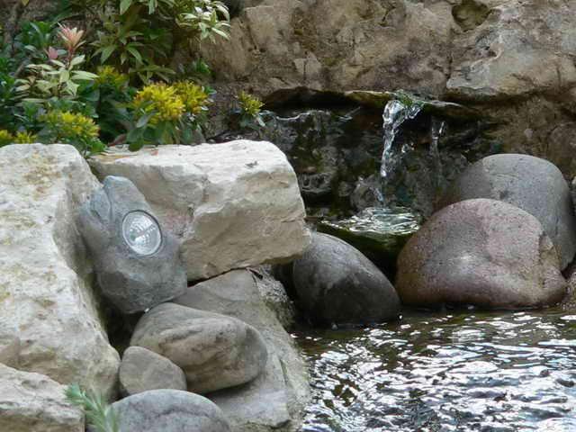 Plätschernder Teich